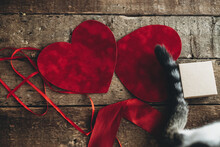 Happy Valentines Day. Cute Cat Tail On Red Velvet Hearts, Ribbon And Gift Box On Rustic Wood. Love