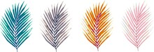 Beautiful Colorful Vector Leaves And Branches