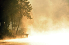 Pine Forest In The Valley And Water In Pang Ung Reservoir, Mae Hong Son Province, Thailand, In The Morning A Golden Light Splashed On The Water. It Creates A Lot Of Smoke And Mist, Warm And Romantic.