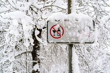 Alcohol Free Area Sign In Public Park With Snow Covered Trees