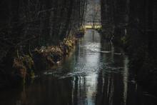 Fluss Bach In Der Lüneburger Heide