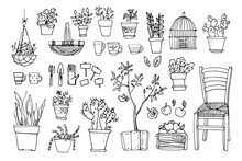 Line Sketch Of Flowers In Pots, Home Decor. Drawing Vector Black. Chair, Furniture, Cacti, Baskets