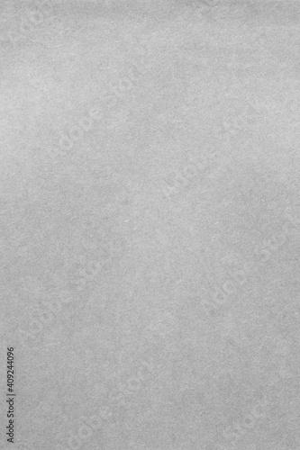 Obraz Grainy vertical grey background paper texture - fototapety do salonu