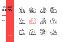 Nuts - Modern Line Design Style Icons Set