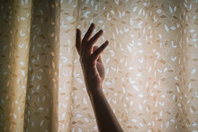 Persons Hand On White And Brown Floral Curtain