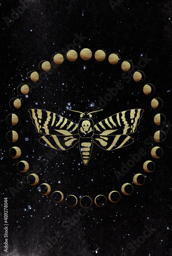 Obraz na płótnie Golden death head moth on dark watercolor background surrounded with golden moon phases