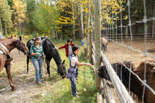 Rancher And Girls With Horses Feeding Grass To Bison At Ranch Fence