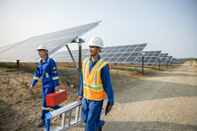 Technicians With Ladder And Toolbox In Solar Farm