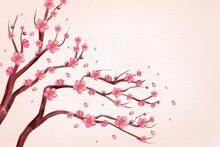 Watercolor Pink  Plum Blossom Background Copy Space White Background Illustration