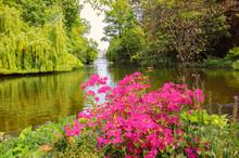 Azaleas Flowers Blooming Over The Serpentine Lake In Hyde Park, Kensington Gardens. London, UK.