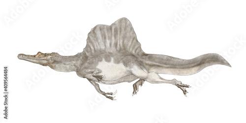 Cuadros en Lienzo スピノサウルス 恐竜  白亜紀前期から後期の現在のアフリカ大陸の北部に生息していたとされる。ティラノサウルスよりも大型で獣脚類としては最大級。背中に特徴的な大き