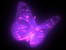 Butterfly Psychedelic Neon Light In Black Background
