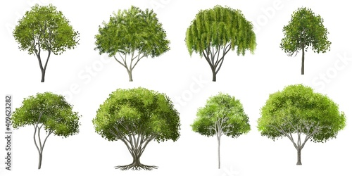 Obraz na plátne Collection of abstract watercolor green tree side view isolated on white backgro
