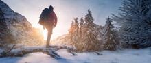 Wanderer In Winterlicher Berglandschaft