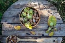 Fresh Hazelnuts In A Wicker Basket