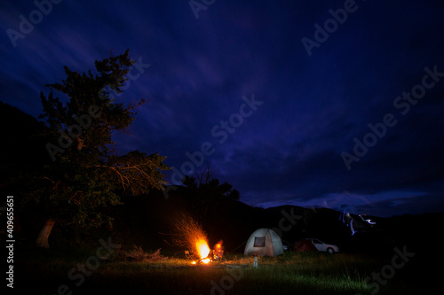 Fototapeta night in the forest obraz na płótnie