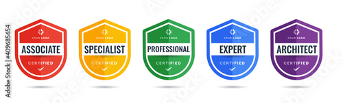 Fototapeta Certified logo badge shield design for company training badge certificates to determine based on criteria. Set bundle certify with colorful security vector illustration. obraz