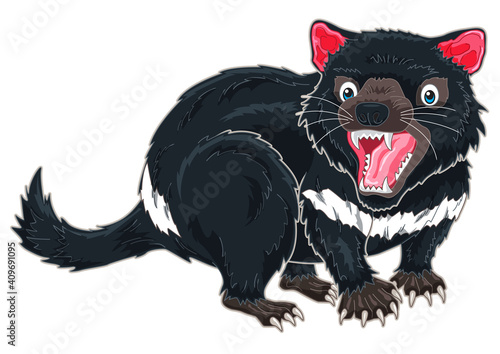 Fototapeta Tasmanian Devil cartoon illustration from Australia