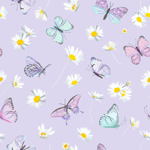 Watercolor Daisy Flowers And Butterfly Vector Background. Seamless Spring Floral Pattern