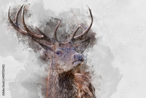 Fényképezés Digital watercolor painting of Beautiful image of red deer stag in vibrant golds