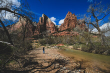 Zion National Park Utah Rugged Peak Of The Three Kings With Person Taking Photos