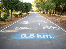 Cycling Path In The Park. Bicycle Traffic Sign Painted On The Floor