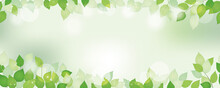 新緑のシームレスな背景イラスト