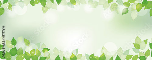 Obraz 新緑のシームレスな背景イラスト - fototapety do salonu