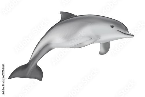 Obraz na plátně Tursiops Truncatus Ocean or Sea Bottlenose Dolphin. 3d Rendering