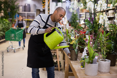 Fototapeta Professional man florist watering flowers from a plastic watering can in floral