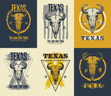 Texas Buffalo Tee Print Graphic. Vector Illustration. Vector Set.