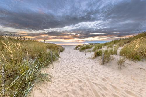 Obraz na plátně Landscape view of sand dune on the North sea coast