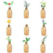 Bottles With Herbs And Spices Isolated On White Background. Watercolor Hand Drawing Illustration. Horsetail, Calendula, Mint, Berry, Juniper, Nettle. Clip Art.