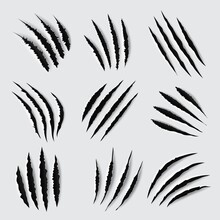 Claw Scratches And Marks Vector Design Of Animal Paws Torn Traces, Slashes And Scars. Tiger, Lion, Cat, Bear, Horror Dinosaur Monster And Scary Werewolf Beast Attack Damages
