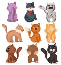 Cute Cats In Different Poses. Domestic, Funny Cats On White Background. Colorful Cats. Vector Icons.