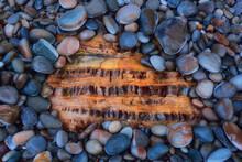 Hidden Stone Treasure On The Asturias Coast, Pebbles That Reveal A Precious Rock
