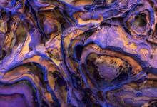 Strange Texture With Alien Patterns On A Cliff In Asturias