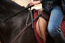 Crop Side View Of Female Equestrian In Boots Sitting In Saddle And Riding Obedient Horse In Forest