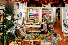 From Above Professional Female Florist Arranging Christmas Flower Bouquet While Working In Shop On Wooden Table