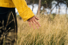 Unrecognizable Female In Yellow Sweater Tenderly Touching Dry Grass Growing In Meadow In Fall