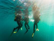 Cropped Unrecognizable Divers Scuba Diving In Deep Ocean