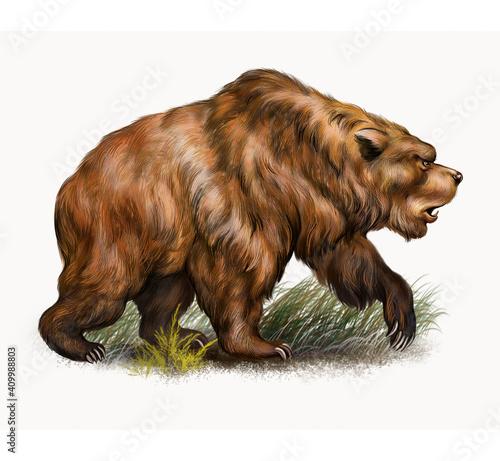 Fotografie, Obraz The cave bear (Ursus spelaeus)