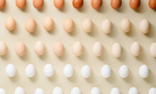 Egg Pattern Different Color Chicken Eggs