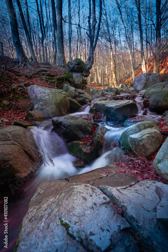 Belleza invernal en el bosque con riachuelo y piedras