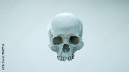 Fotografie, Obraz Human skull with an open lower jaw on a Dark isolated background