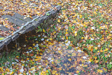Old Wooden Bridge And Wet Autumn Leaves Below. Mood Of Sadness And Autumn Depression. Sad Autumn Background