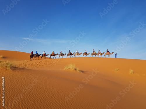 Cuadros en Lienzo camel caravan in sahara desert
