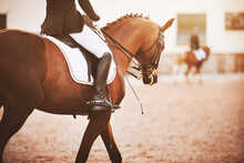A Bay Horse With A Rider In The Saddle, Holding A Whip In His Hand, Participates In Dressage Competitions, And A Rival Trains In The Background. Horse Riding. Equestrian Sports.