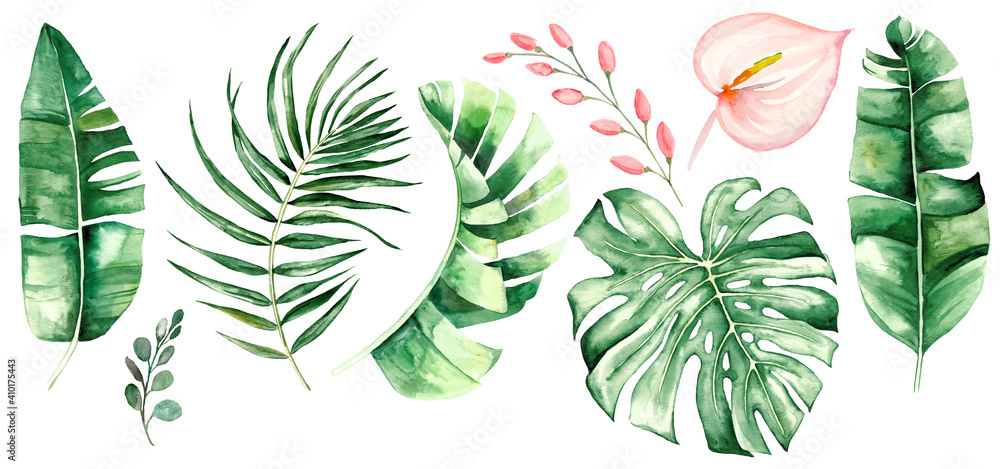 Fototapeta Watercolor tropical leaves and flowers illustration