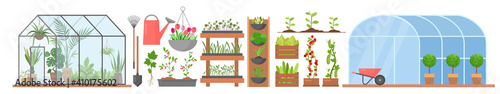 Fotografie, Tablou Greenhouse with growing flowers plants vegetables set, glass or plastic tunnel g